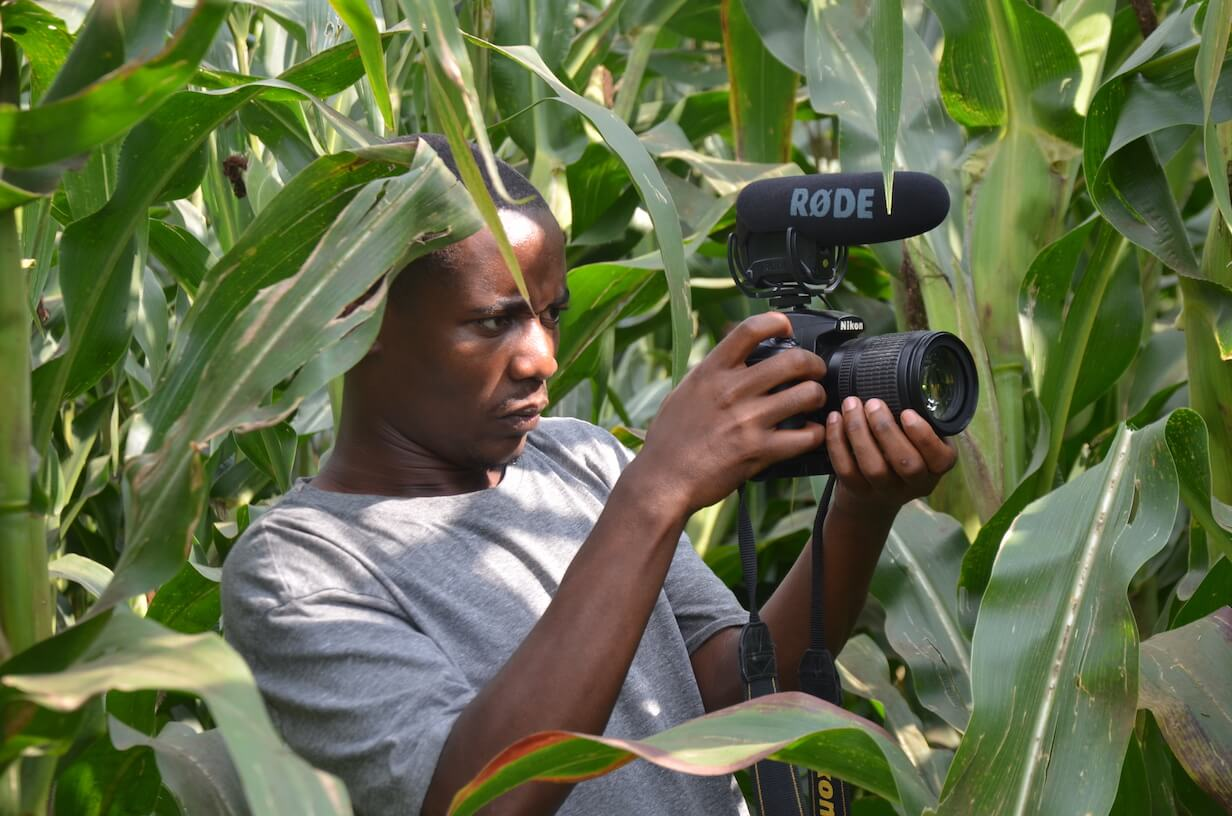 habimana jean claude in his mothers corn farm