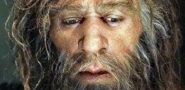 hi neanderthal