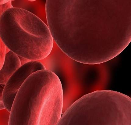 polycythaemia erythrocytosis or high red blood cell count