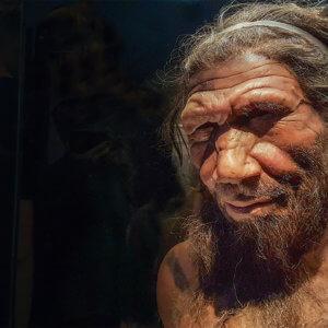 neanderthal p