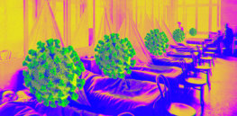 coronavirus historians echoes past pandemics