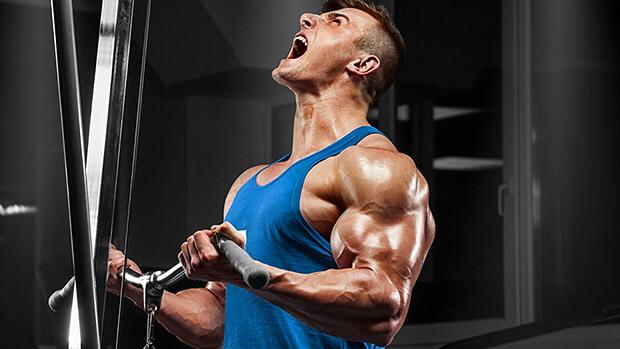 keep your carbs raise your testosterone