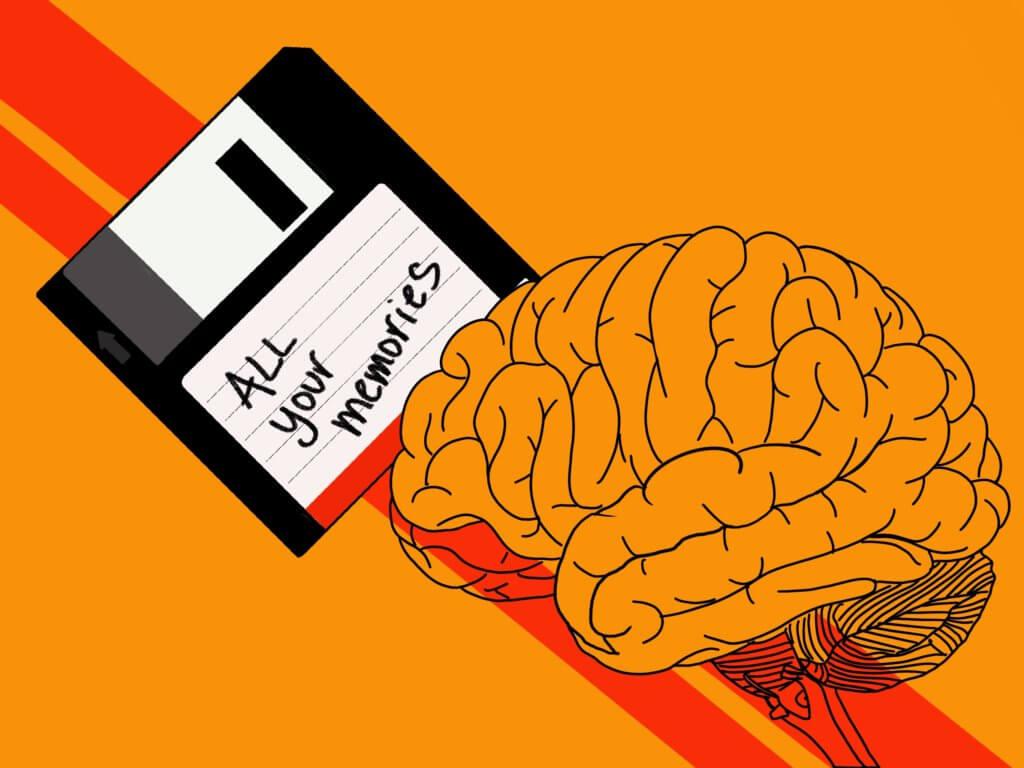 brain memories