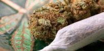 marijuanajoint