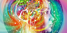 psychedelics ptsd neurosciencnews public
