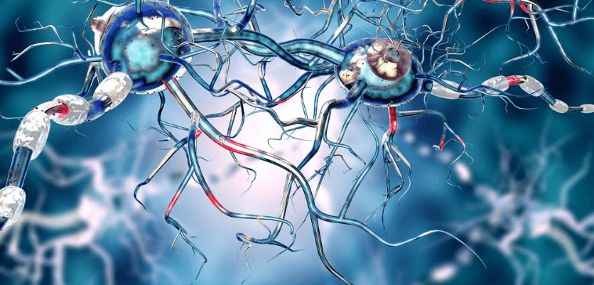 screenshot key to effective parkinson's treatment may lie in stem cells