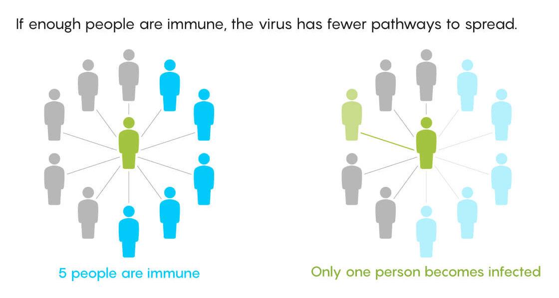 herd immunity diagram