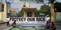filipino farmers protest x