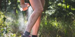 insect repellent skin protection against tick and royalty free image