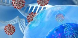 sars cov immune system genetics covid
