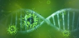 covid genetics immune system