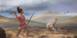 Males=hunters, females=gatherers? Not so fast. Many early big-game hunters were women, research suggests