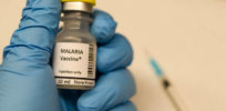200 million people contract malaria each year. A genetically engineered vaccine might soon be coming