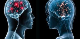 Men and women require distinct brain tumor therapies, underscoring hard-wired differences in the brain
