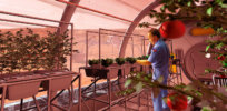 Growing crops on Mars? Geologists explore ways to feed a Martian colony without hauling soil into space
