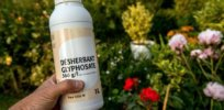 France pledged to ban glyphosate, but regulators say phasing out weedkiller probably isn't possible