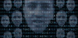 Level the playing field: Genetics makes us not only different but unequal. CRISPR could change that. Should we do it?