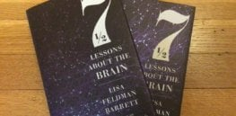 Acting rash or unwise? Don't blame your 'lizard brain', claims 'Seven and a Half Lessons About the Brain' book