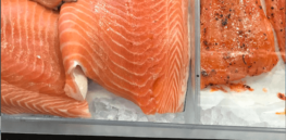 'People always have, and likely always will, fear new things': Why we still can't buy AquaBounty's GM salmon