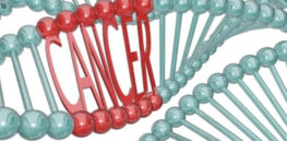 Advanced cancers in humans linked to rogue evolutionary mutation