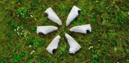 Earth-friendly shoes: Adidas developing sustainable leather alternative made from fungus
