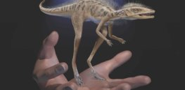 10 top dinosaur discoveries of 2020