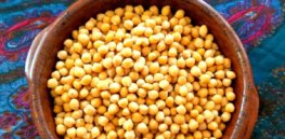 GM chickpea could halt drought-fueled yield declines