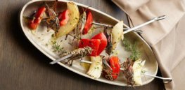 Bugs for dinner? EU officials find edible mealworms pose 'no safety concerns'