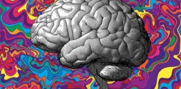 Acid redux: Here's how psychedelics are shaping the next generation of antidepressants