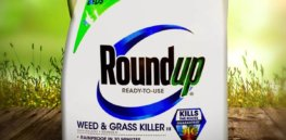 Misleading glyphosate-cancer study Part 2: 'Symptom of a widespread problem'—Concerns about ideological activism in science research and communications