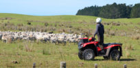 New Zealand farmers experience 25% lower cancer rates than city dwellers, study shows, challenging misleading environmentalist claim they face higher pesticide cancer risks