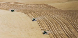 Viewpoint: Farms today are massive—but it's not because they're 'greedy factory farms'