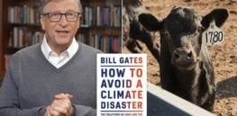 Bill Gates under fire for urging wealthy countries to give up beef and switch to synthetic meat