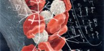 Cancer dates back millions of years. Now we are cracking its evolutionary code