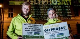 Glyphosate exit: Germany could ban weedkiller by 2024 to 'preserve clean habitats for insects'