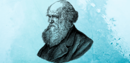 A complicated legacy: Reassessing Darwin's views on race and gender 150 years after the 'The Descent of Man'