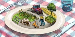 EU pitches 23 'actions' to achieve Farm 2 Fork targets, including promoting organic food in schools