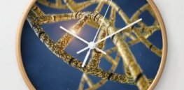 What's your biological age? There's a genetic clock that could tell you