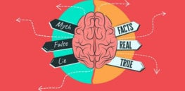 3 myths of how the brain works dispelled