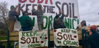Viewpoint: 'Organic At All Costs'? How a small clique of anti-GMO groups invented the conventional vs organic myth
