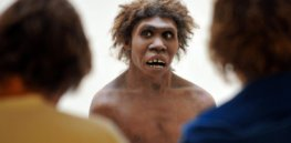 Here is the consensus theory of why Neanderthals went extinct
