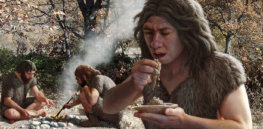 'Quest for deliciousness': How hunger for tasty food drove human evolution