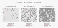 Simulation: Here's how herd immunity works