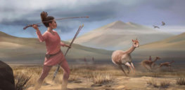 Prehistoric men hunted and women gathered? New evidence suggests that's too simple