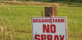 Podcast: Should farmers embrace 'natural' organic chemicals to replace 'synthetic' inputs? Moving beyond the outdated debate