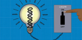 CRISPRoff: Gene editing epigenetic method allows researchers to turn most genes in the human genome on and off without altering DNA sequences