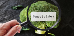 Do pesticide residues on crops pose a hazard? Latest EU Food Safety Authority report says no