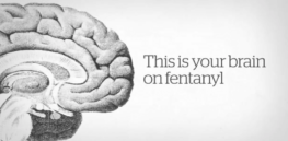 Opioid vaccine could rein in addictions? Shot in development targets fentanyl, blocks drug from reaching the brain