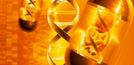 A golden age of gene therapy is now in sight