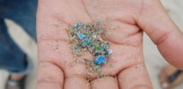 Microplastics are overwhelming the environment. Here's how we could mobilize bacteria to clean up our pollution mess
